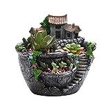 Coolga Maceta Creativa para Plantas suculentas Decorada con un Mini jardín de Hadas y una...