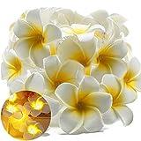 XIYUNTE Luces de cadena Flores Luces de hadas - Luces de cadena de 9FT/20 LED Luces de...