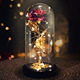 La Bella y la Bestia Rose, Red Silk Rose en Dome Glass con 20 LED Fairy Lights String,...