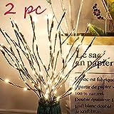 Luminosas de LED 2 Ramas, Decoración para Fiestas y Navidad, Luces de Cuento de Hadas,...
