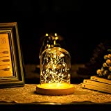 Glasseam Cloche de Cúpula de Vidrio Pequeño Transparente Cúpula de Cristal con Luz LED...