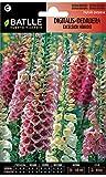 Semillas de Flores - Digitalis - Dedalera excelsior híbrido - Batlle